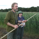 Putting up Swallow nets © BTO